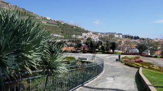 Madeira, Garten Ilheu in Camara de Lobos