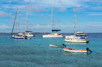 Group of sailboats on blue sea near coast