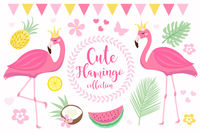 Cute princess pink flamingo set, modern cartoon style. Summer tropical collection for children with coconut, pineapple, palm leaves, flowers. Vector illustration