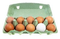 ten chicken eggs in green box isolated
