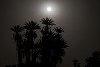 Vollmond in der Sahara