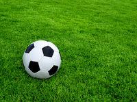 Fußball-Rasen-2.jpg