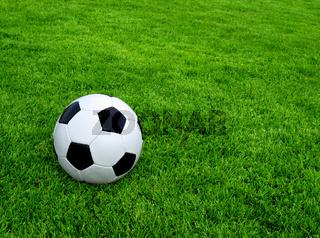 Klassischer Fußball auf grünen Rasen