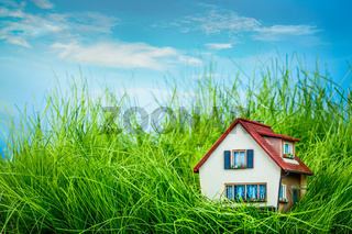 House on the green grass