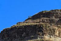 Touristen im Aufstieg zum Kokor Gipfel, Gheralta Massiv, Hawzien, Tigray, Äthiopien