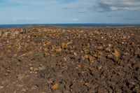 Lava field covered by lichens and atlantic ocean in the background.