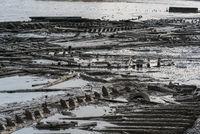 Zerstörte Stege im Wattenmeer vor George Town, Malaysia