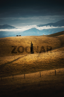 an impression of the south island of New Zealand