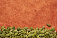 raw pumpkin seed against textured paper