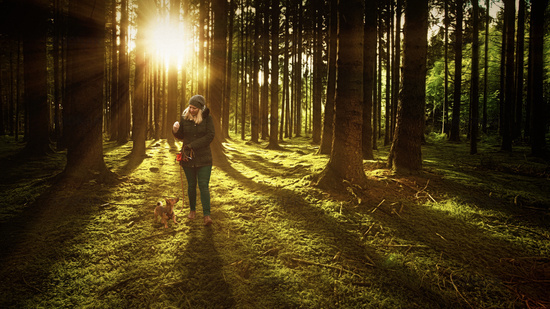 Woman and her dog walking on a track in the forest. Hiking, dog school and outdoor activity concept.