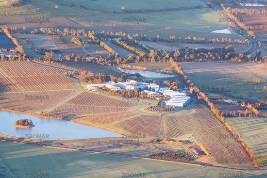 Aerial View of a Vineyard in Australia