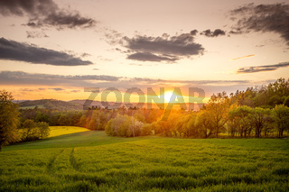 Fantastic day with fresh blooming hills in warm sunlight. Dramatic and picturesque evening sunset scene. Location place: Czech Republic, Central Europe. Bohemian fields with oilseed rape.