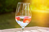 Glass of fresh sparkling wine with strawberries in the garden on a sunny day