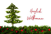 Christmas Tree Made Of Fir Branch, Willkommen Means Welcome