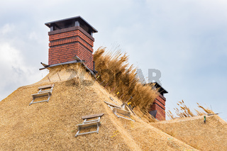 New thatched roof with chimneys on house