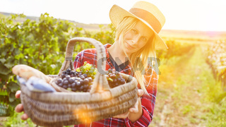 Frau mit Weintrauben im Picknickkorb