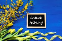 Spring Flowers, Branch, Blackboard, Endlich Fruehling Means Hello Spring