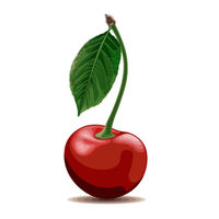 Ripe red Cherry isolated on white background.
