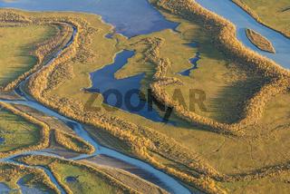 Herbst im Laitauredelta, Welterbe Laponia, Lappland, Schweden
