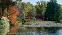 View of Sheffield Park Gardens in Autumn