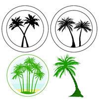 4 Palm.eps