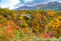 Beautiful autumn color of foliage at Naruko Gorge