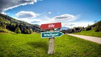 Street Sign Intelligent versus Silly