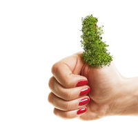 Woman holding her green thumbs up isolated on white background. Planting, gardening and environmental concept.