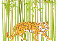 Tieger im Bambus.jpg