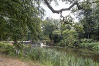 Fluss Dinkel bei Denekamp, Niederlande