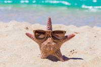 Starfish in sunglasses on beach