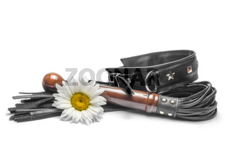 bdsm leather lash and black collar with yellow daisy flowers on a white background