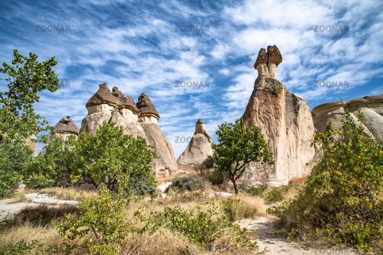 Fairy Chimneys rock formations in Pasabag or Monks Valley, Cappadocia, Turkey.