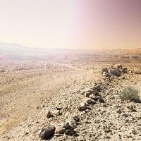 Desert in Israel at sunrise