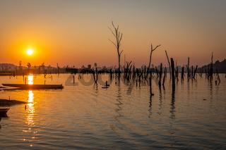 Sunset over dry trees, Nam Theun river, Thalang, Thakhek, Laos