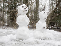 snowman (or woman) couple
