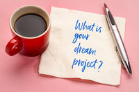 What is your dream project? Handwriting on a napkin.