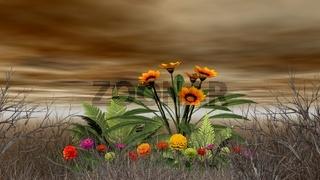 landscape-desert (34).jpg