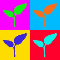 Pflanze und Popart - Plant and pop-art