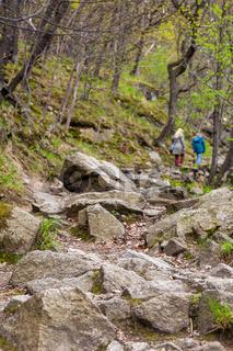 Über Stock und Stein Wanderwege im Bodetal Harz
