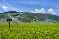 Automatic irrigation of crop fields
