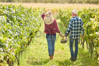 Junges Paar im Weinberg mit Picknickkorb