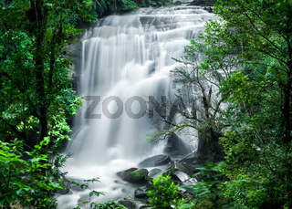 Tropical rain forest with waterfall. Thailand