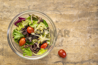 bowl of healthy green salad with copy space