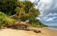 Beautiful paradise beach in Masoala, Madagascar