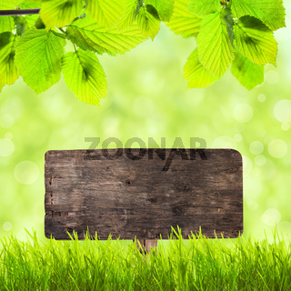 Wooden plate over green grass