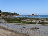 Austernbänke an der französischen Küste in Cancale