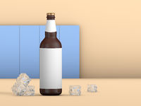 Beer bottle and ice