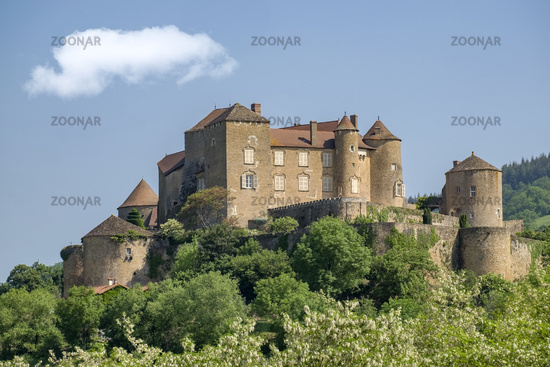 Schloß Berze oder Festung von Berze le Chatel