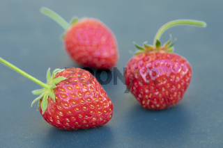Drei reife Erdbeeren auf taubenblauem Untergrund